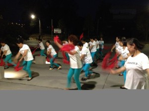 The RMCA Dance Group dancing under the John Whitton Bridge Rhodes